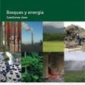 Bosques y energía – Cuestiones clave