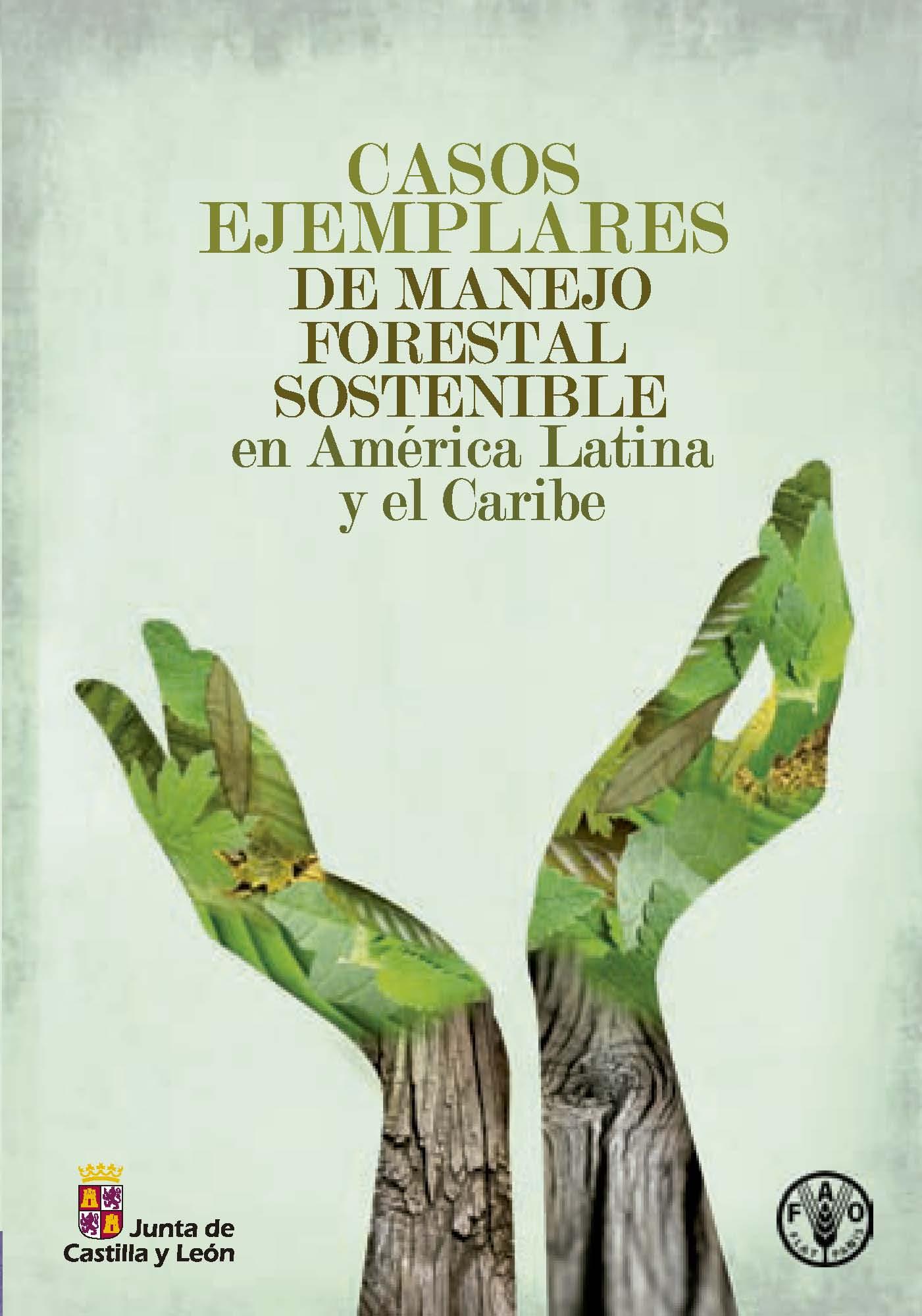 Casos ejemplares de manejo forestal sostenible en am rica for Manejo de viveros forestales