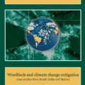Forests and climate change in the near east region (FAO)