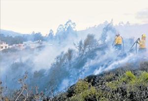 cuerpo de bomberos