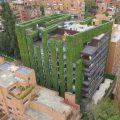 En Colombia se encuentra el jardín más alto del mundo