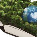 Evolución y avances del Código Orgánico del Ambiente