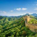 China anuncia que cubrirá de bosques casi un cuarto del país para 2020