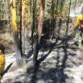 Se registró un incendio forestal en Nayón- Quito