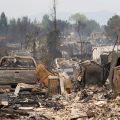 Verano en llamas, un indicador de la salud de nuestro planeta