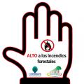 """La Corporación de Manejo Forestal Sustentable y Ecuador Forestal lanzan campaña de: """"Prevención de incendios forestales"""""""