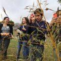 Ecuador, en la iniciativa 'Reto Naturalista'