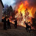 Se registra incendio forestal en California