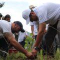 1000 árboles nativos fueron plantados en la Reserva Geobotánica Pululahua