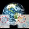 El planeta: beneficiario inesperado del coronavirus